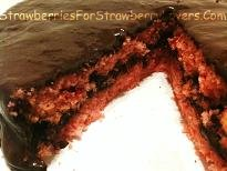 Strawberry-Chocolate Layer Cake