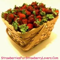 Large Basket of Strawberries